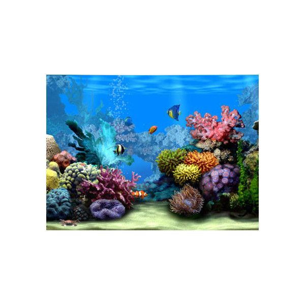 Free Living 3D Aquarium Screensaver