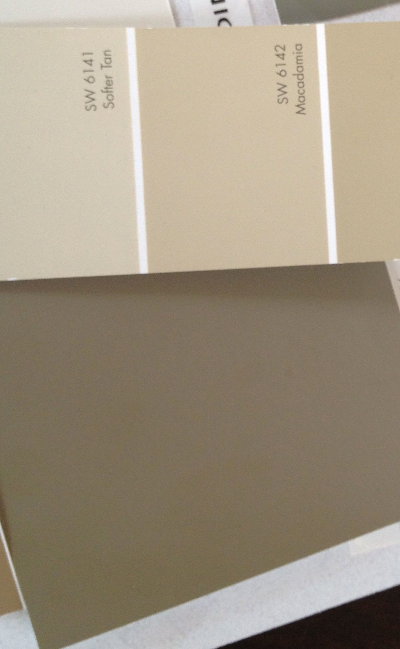 Exterior Paint Colors Macadamia Is The Hardiplank Color