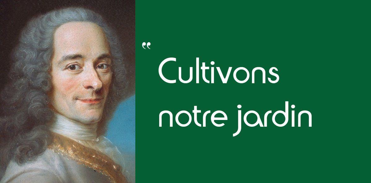 Citation Voltaire Jardin Gratuit   CitationMeme