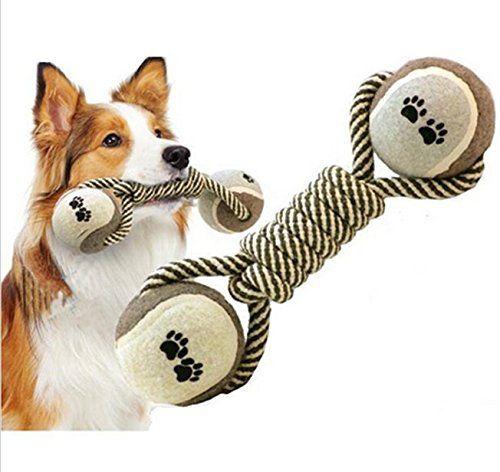 Zahnreinigung Spielzeug Hund