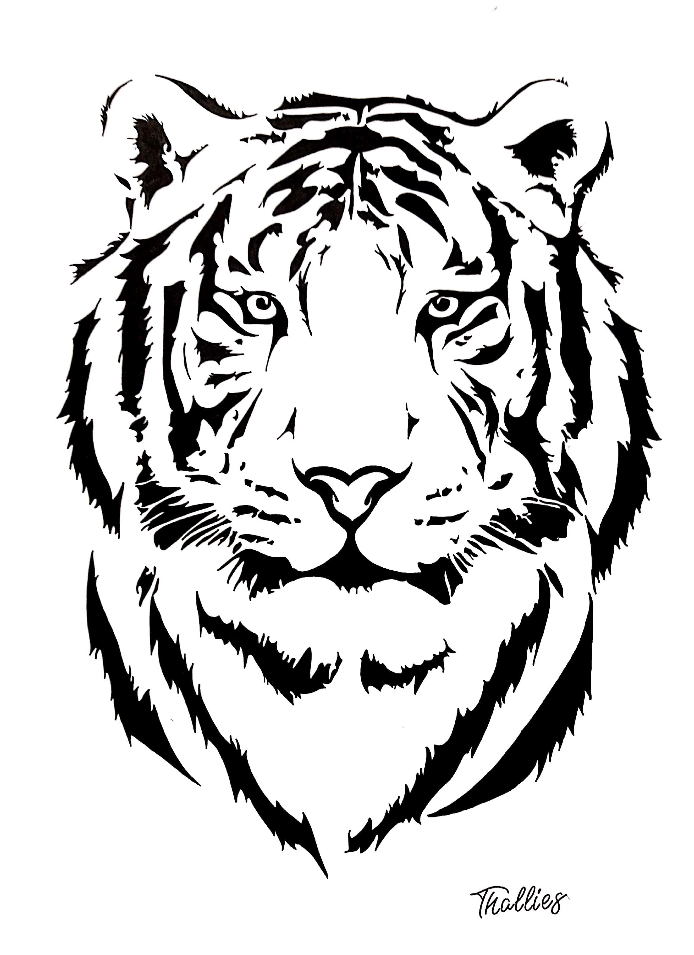 Tigre Stencil Art Cara De Tigre Dibujo Ilustracion De Tigre Tigre Para Dibujar