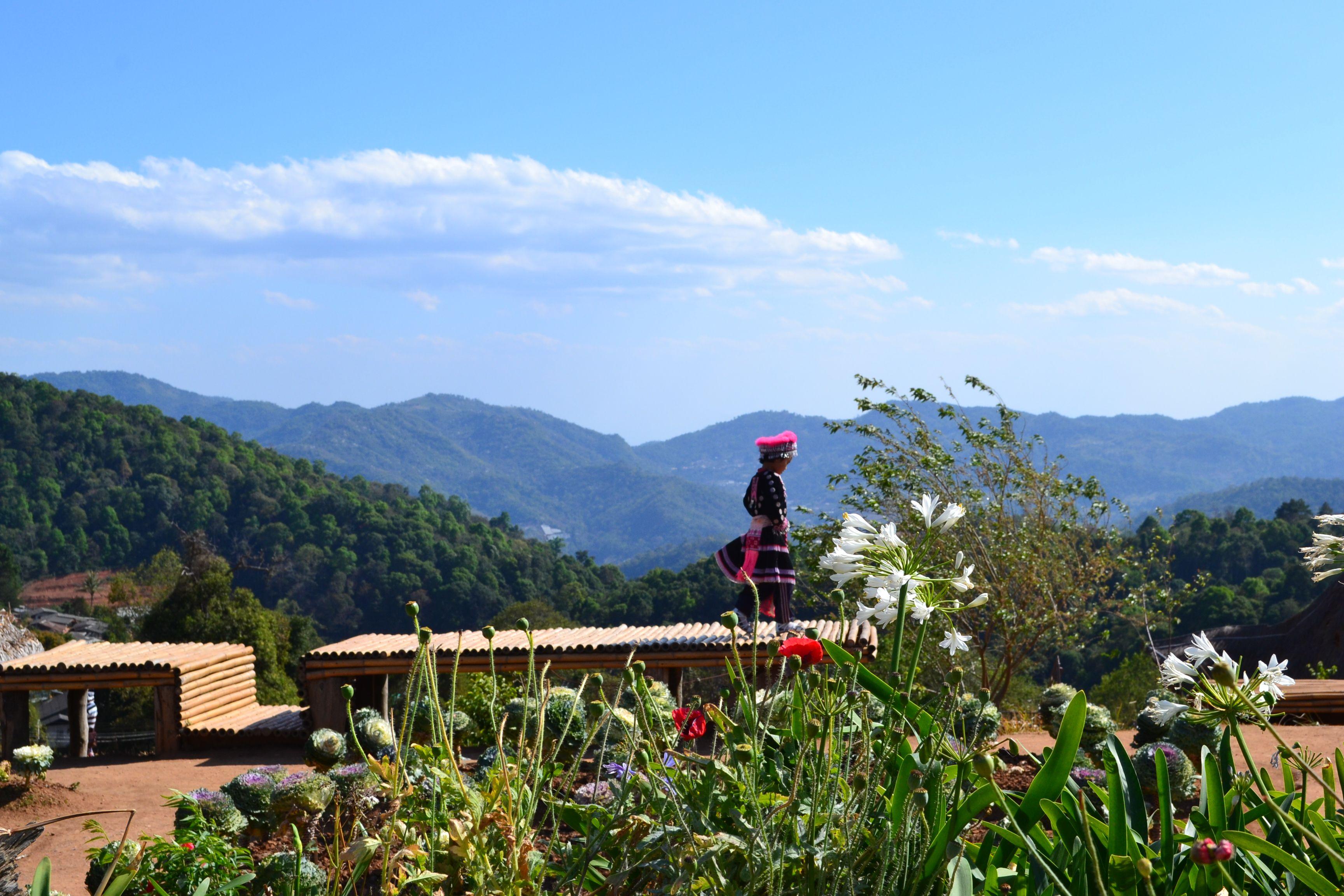 Local #hilltribe #girl enjoying the #view at #monjam near #Chiang #Mai