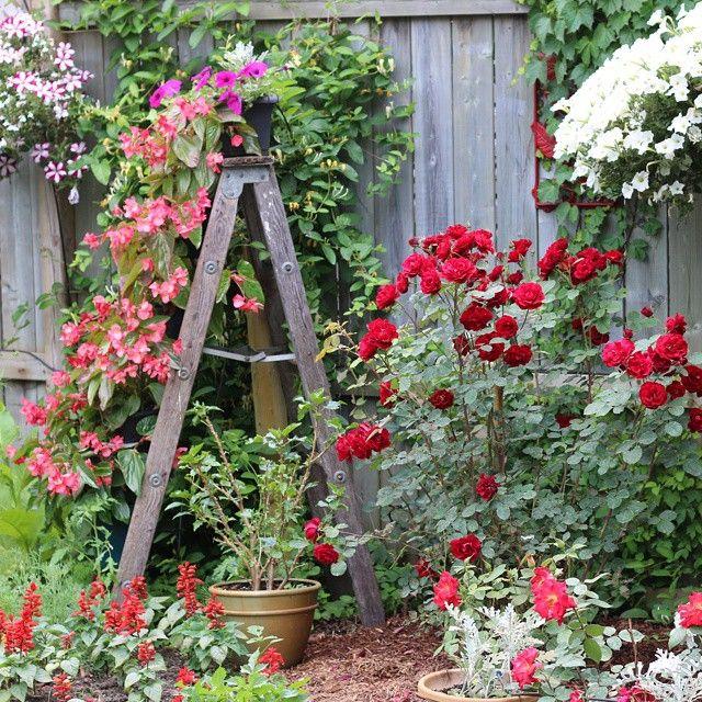 Ladder Garden Art. Old Wooden Ones Are Best. …