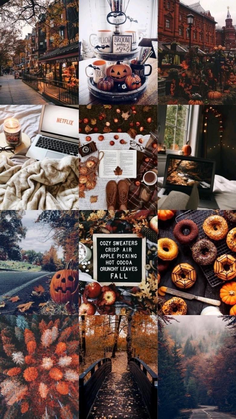 fall /Autumn Mood boards 🍁🍁