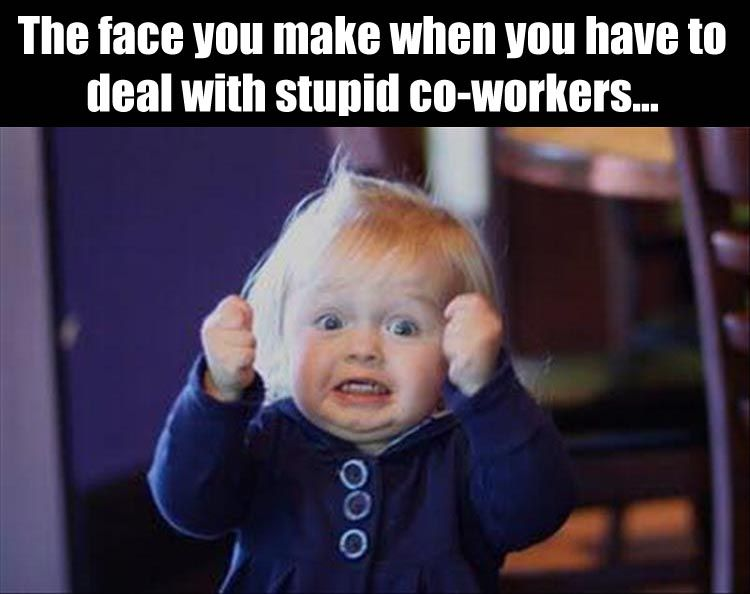 Funny Pictures Of The Day 39 Pics Work Quotes Funny Work