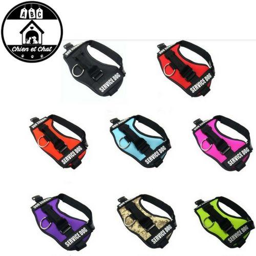 harnais pour chien personnalisable collier laisse et harnais pour chien pinterest. Black Bedroom Furniture Sets. Home Design Ideas