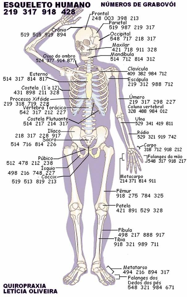 Pin von Claudia Estrada auf Grabovoi | Pinterest | Zahlen, Knochen ...