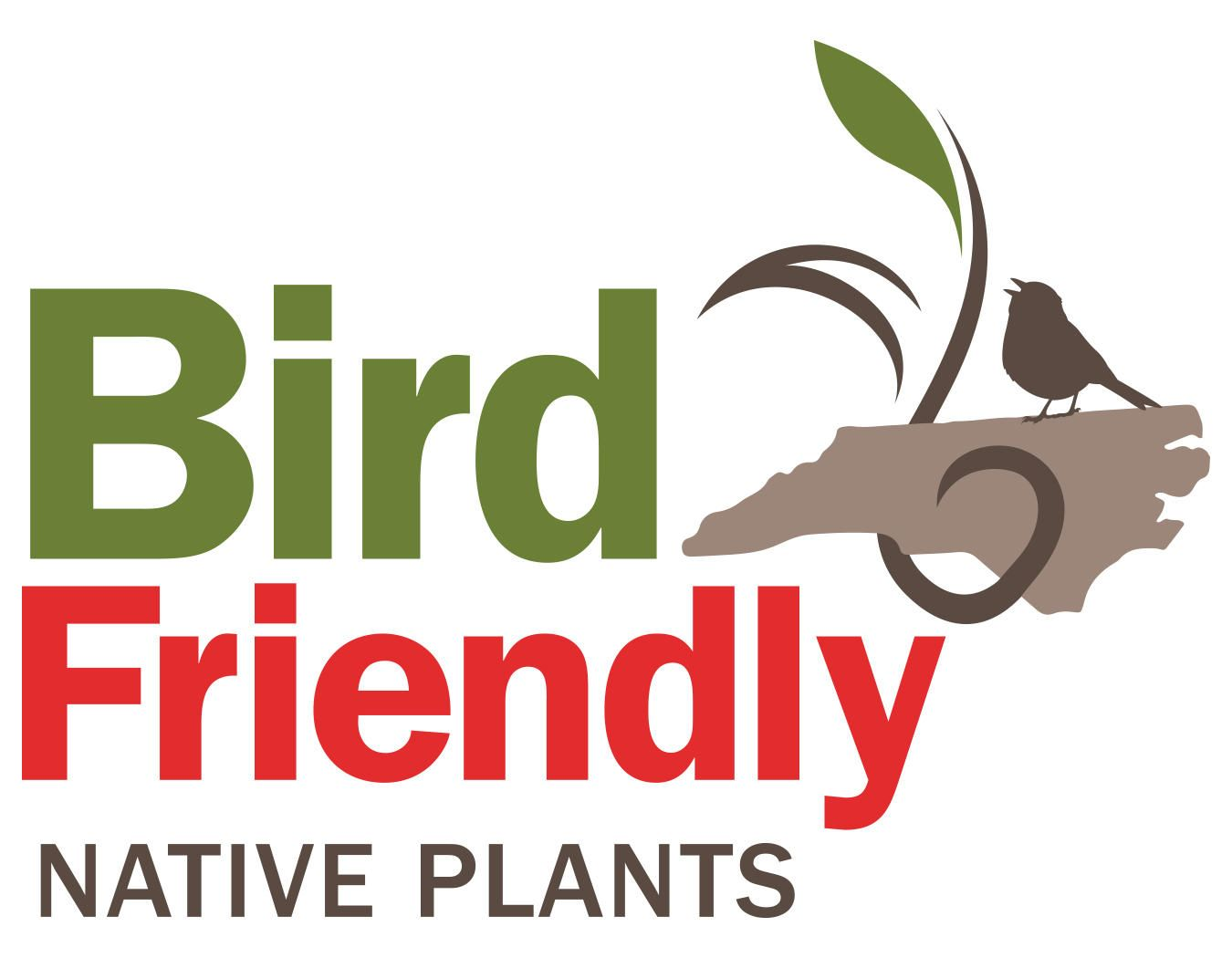 This list of 400 recommended birdfriendly native plants serve as a guide for everyone interested in choosing plants that help birds thrive alongside people