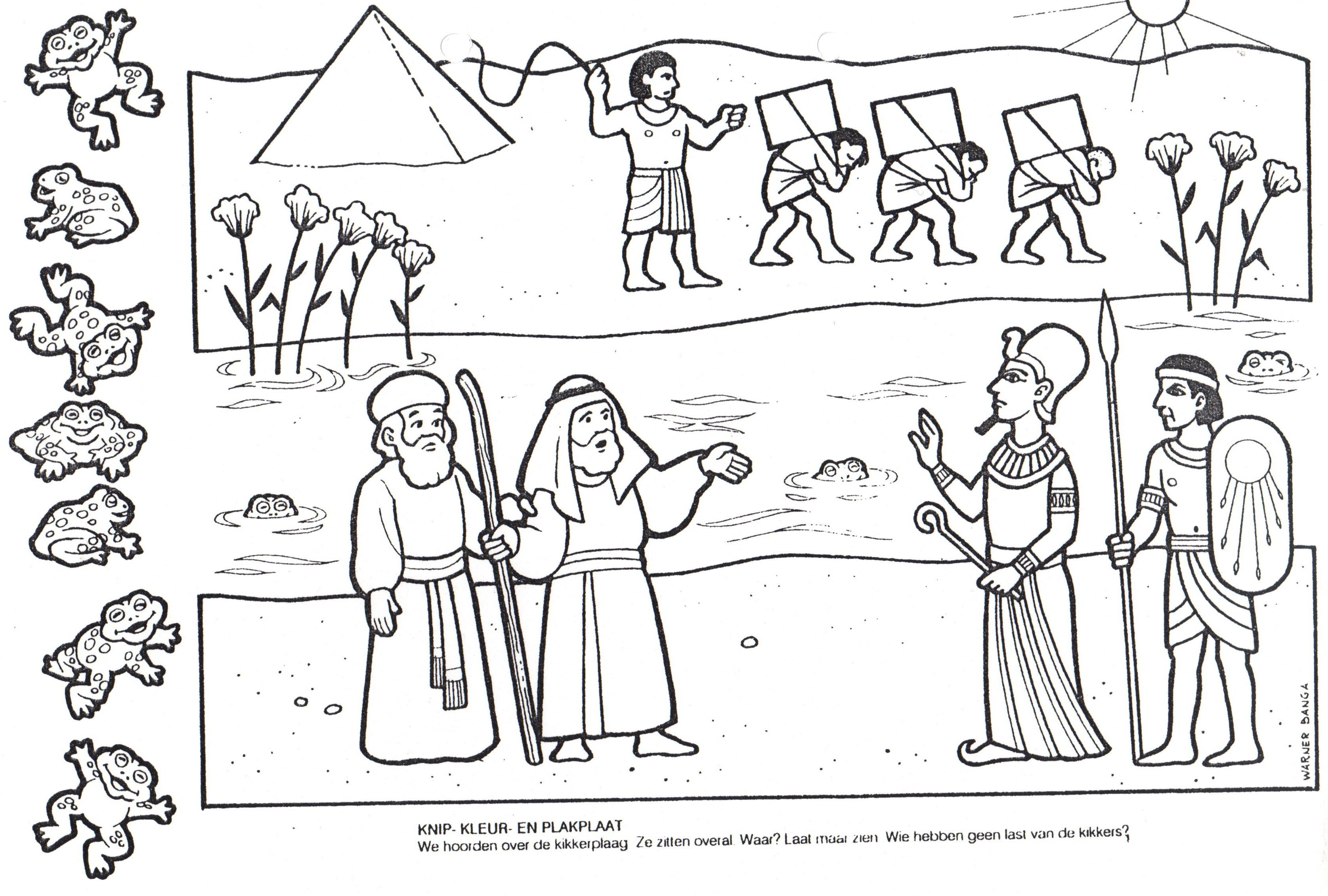 Pin de Svetlana en Bible - Moses | Pinterest | La rana, Ranas y Egipto