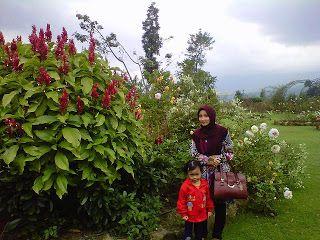 Taman Bunga Mawar Situhapa Garut