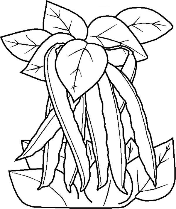 Free Coloring Pages Of Green Bean | Coloring pages ...