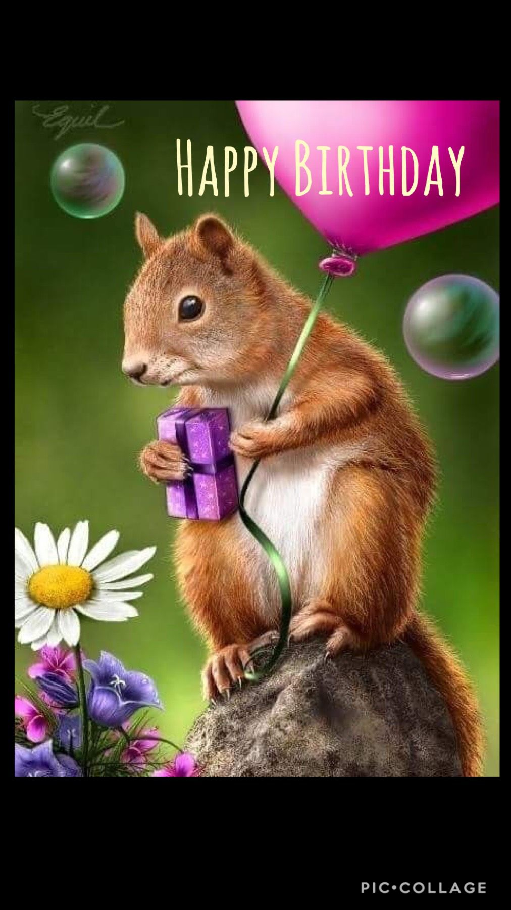 Pin by Diana on Birthday Greetings