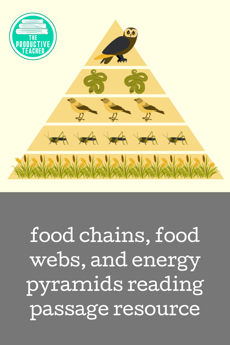A Reading Passage All About Food Chains Food Webs And Energy Pyramids Help Your Students Understan Reading Passages Science Reading Passages Science Reading [ 1102 x 735 Pixel ]