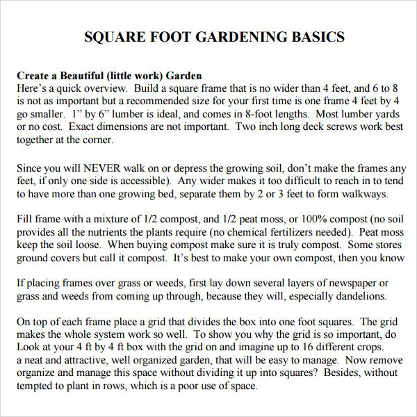 Square Foot Gardening  Gardening Dreams    Companion