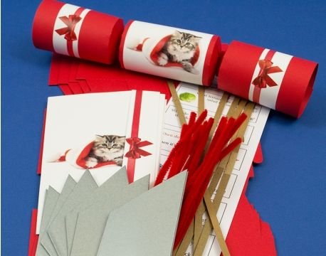 8 red cute christmas kitten make fill your own cracker kit for 8 red cute christmas kitten make fill your own cracker kit for cat lovers solutioingenieria Choice Image