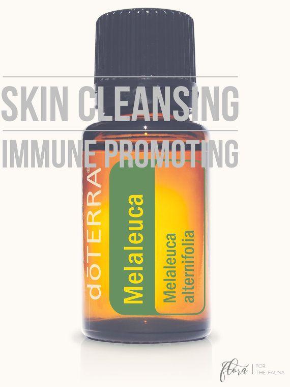 doTERRA Melaleuca Essential Oil 5ml by FloraForTheFauna