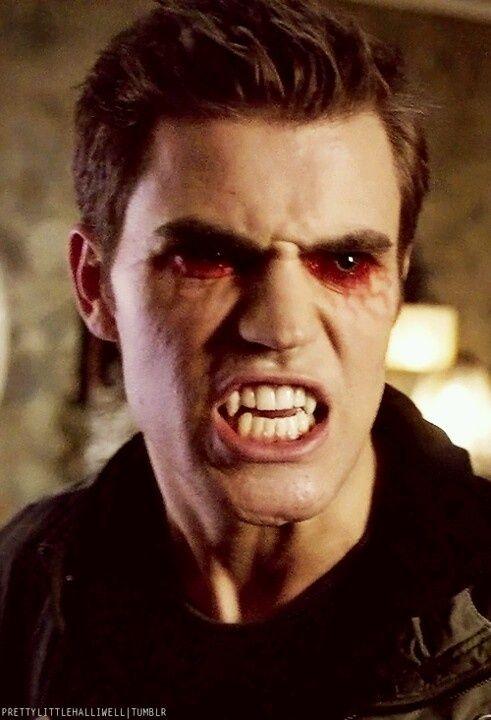 stephen salvatore the vampire diaries it is stefan not