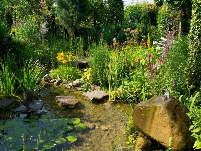 Teich - Sumpfzone anlegen Gardens, Water features and Outdoor - schone garten mit teich