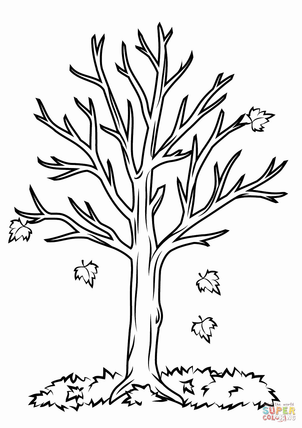 Fall Tree Coloring Page Awesome Fall Tree Coloring Page In 2020 Tree Coloring Page Fall Coloring Pages Leaf Coloring Page