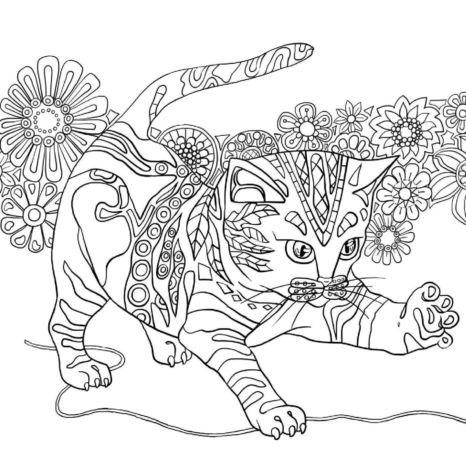 Um reino de cores | Ausmalbilder, Katzen und Zeichnungen