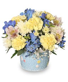 Order Baby Boy Blooms Floral Arrangement From Bella Studios Florist