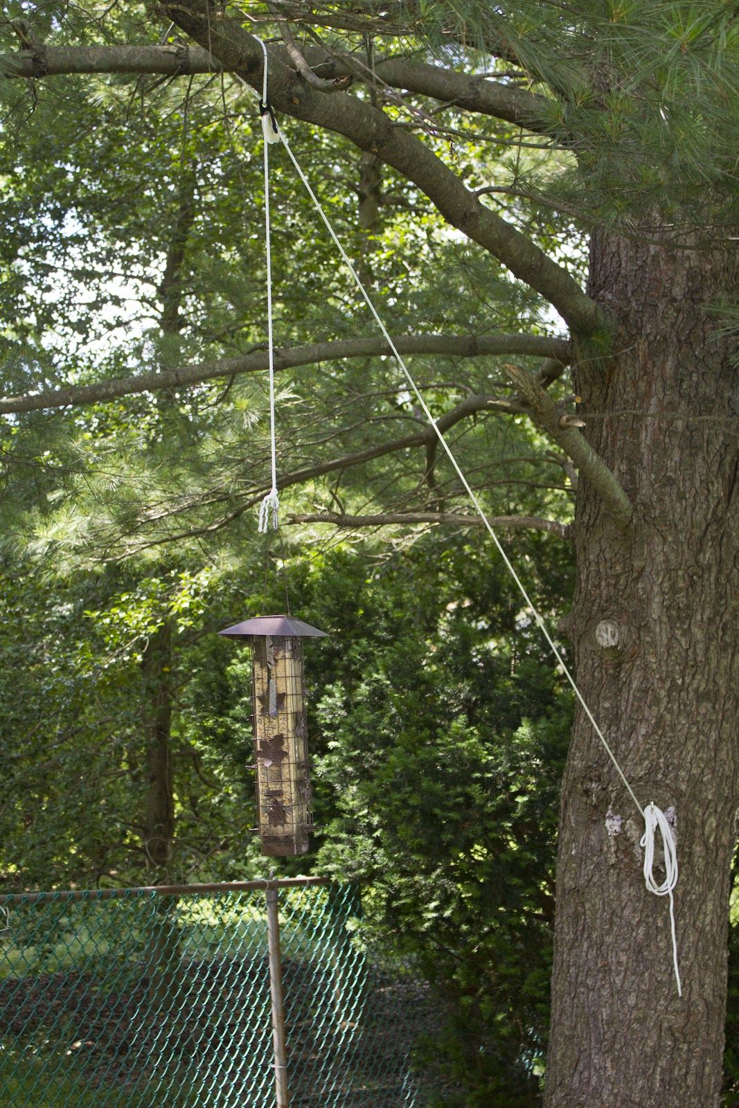 bird feeder pulleys pulley system i rigged to lower the bird