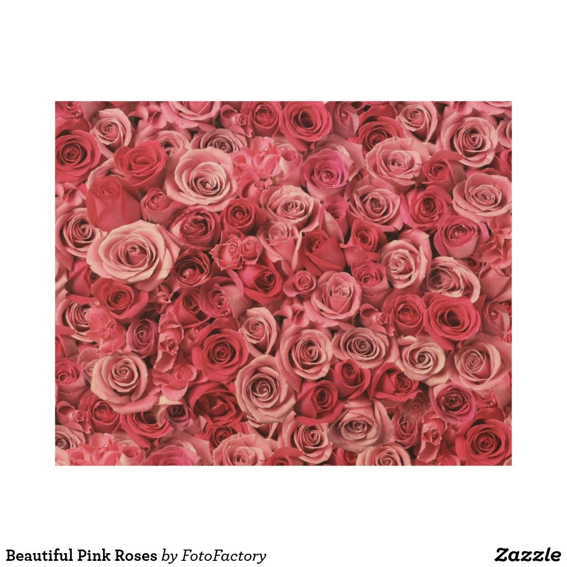 Beautiful Pink Roses Wood Wall Decor Zazzle Com With Images