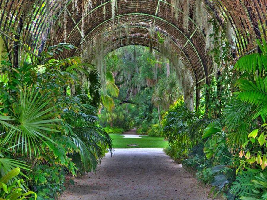 cee890e745b9cf2946348bab9b2d6964 - Florida Botanical Garden Florida Botanical Gardens December 5