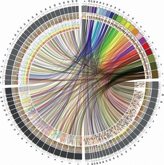 Circle of Life: The Beautiful New Way to Visualize Biological Data | Data visualization | Data visualization, Data visualization tools, Data design
