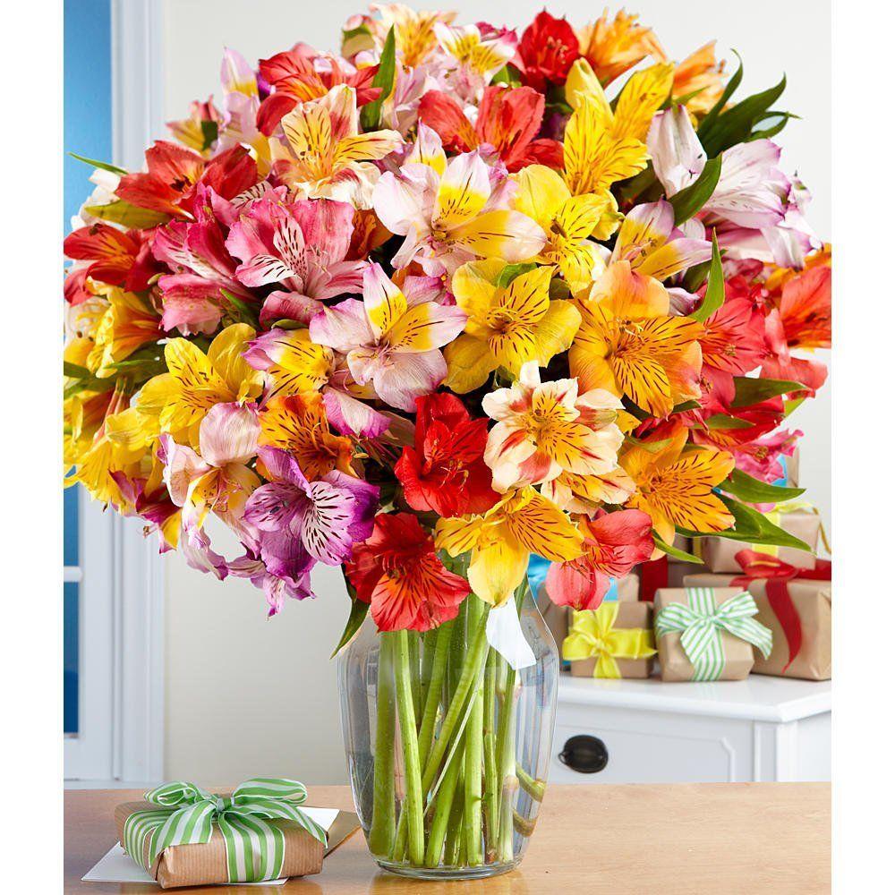100 birthday blooms with free glass vase flowers price 2999 100 birthday blooms with free glass vase flowers price 2999 cheap flower izmirmasajfo
