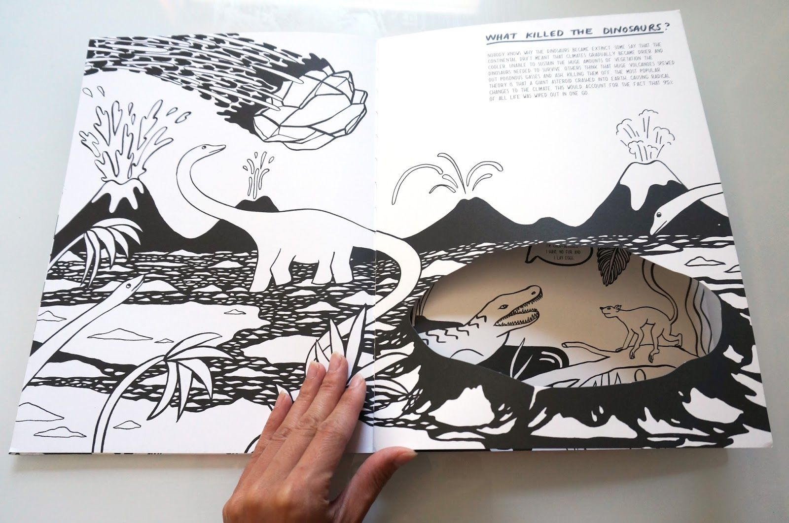 coos & ahhs: Books to Coo About: Evolution: A Colouring Book ...