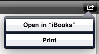 Transferring a PDF from jump drive to iPad Book
