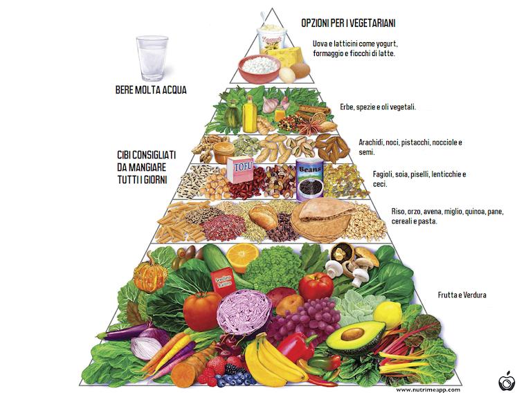 Schema piramidă de pierdere în greutate. 2007 Noua Piramidă Harvard