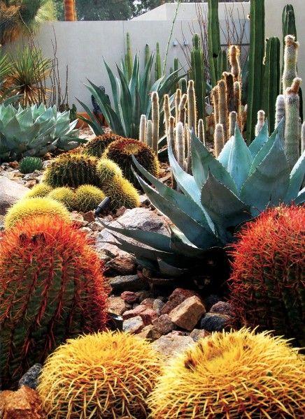 Landscape Architect Steve Martino tips decoracion Pinterest
