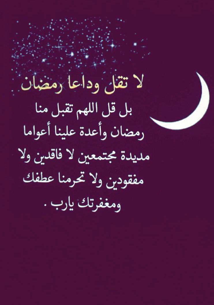 Desertrose Ramadan Kareem Ramadan Day Ramadan Kareem Ramadan
