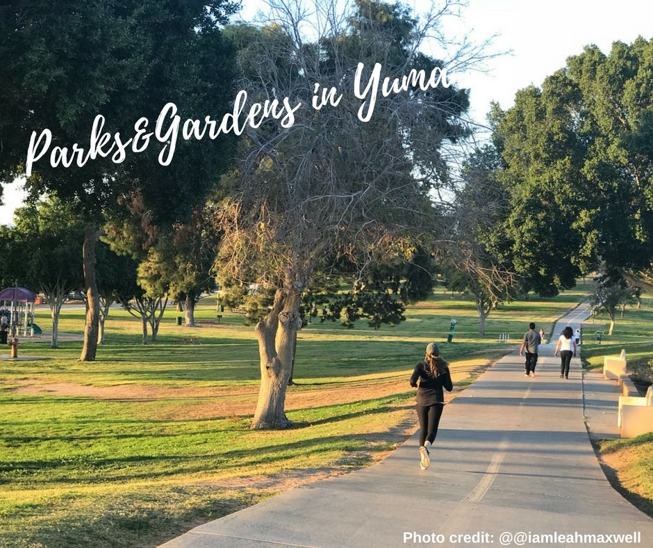 Who S Loving Yuma Weather These Days We All Are And It S Time To Head To Our Parks Check Out Our List Of Yuma S Parks And Garden Yuma Outdoor Activities Park