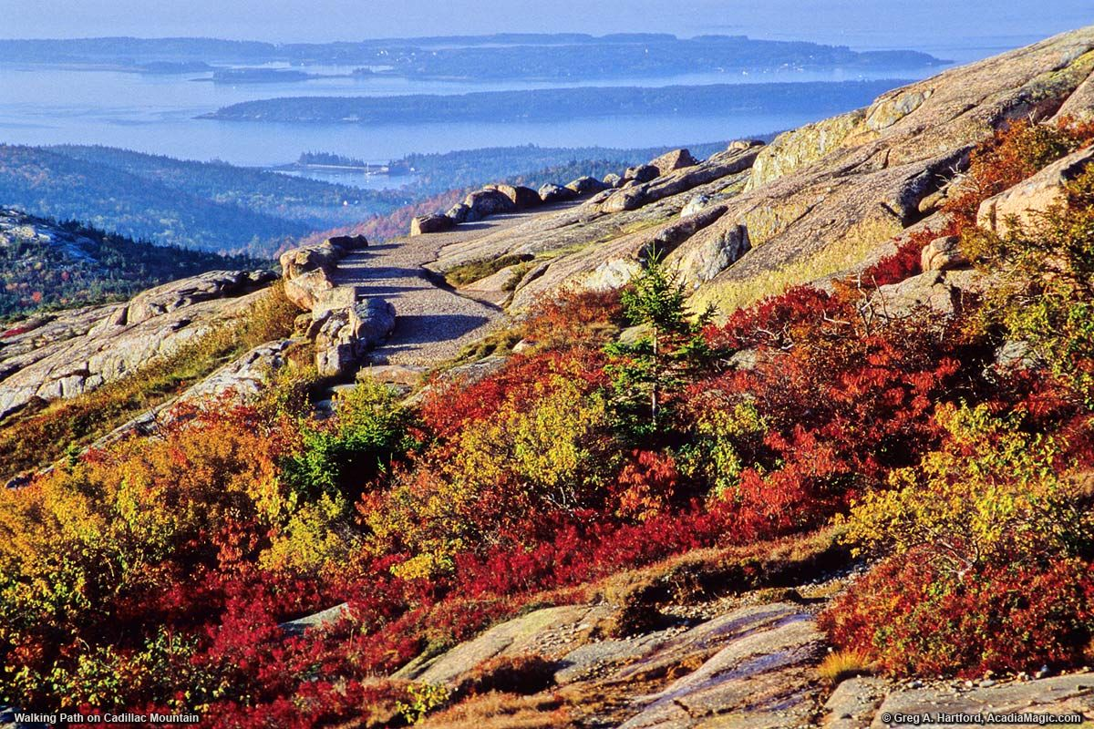 A view of Summit Path during autumn from Cadillac Mountain - Acadia