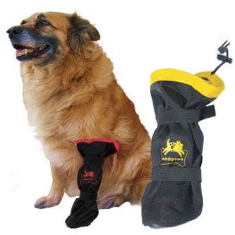 Medipaw Protective Dog Boot This Would Be Good To Have In Our