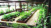 Gartentipps #Garten Tipps für Anfänger, # Garten – Wintergarten Ideen, # Anfänger # Garten Tipps …   – Mein Blog
