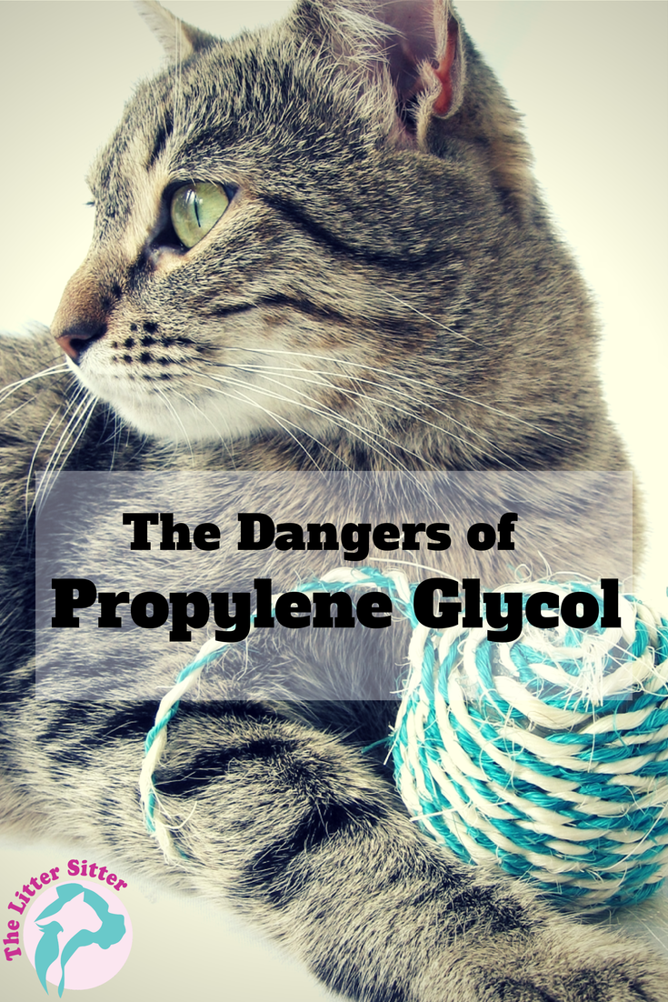 The Dangers of Propylene Glycol #cathealth #cat