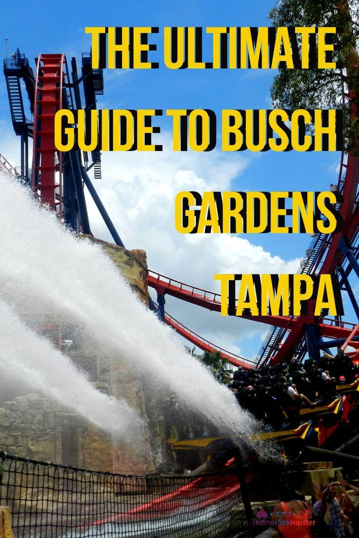2020 Busch Gardens Tampa Bay Complete Guide