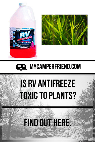 Is Rv Antifreeze Toxic To Plants Find Out Here In 2020 Rv Rv Types Toxic