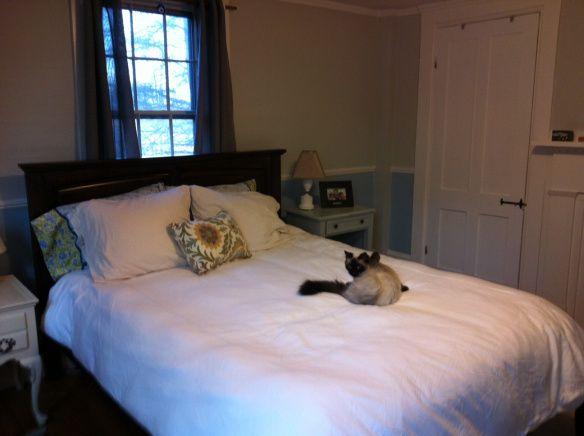 Best Bedroom Paint Benjamin Moore Gray Owl Benjamin Moore 400 x 300