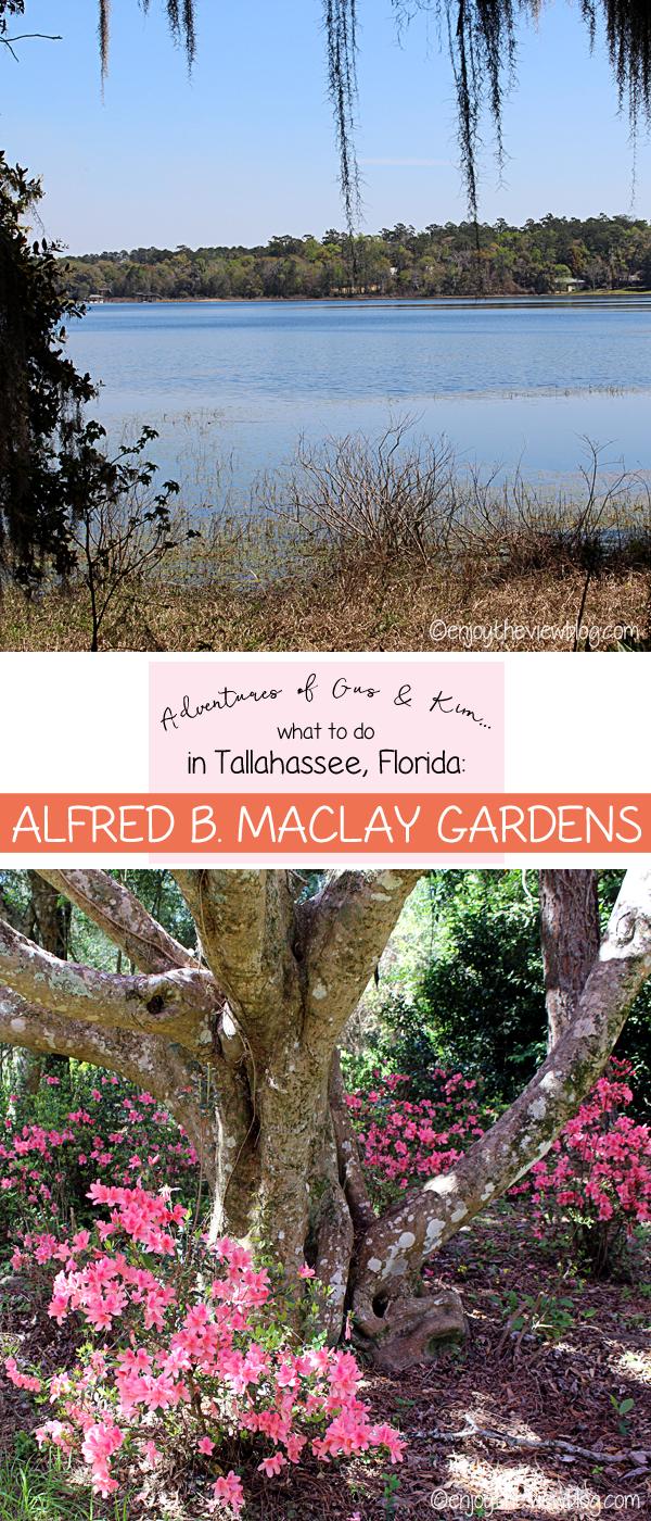 ceeea7c2eb3aa81636b9b8338f2b4e77 - Maclay Gardens State Park Tallahassee Florida