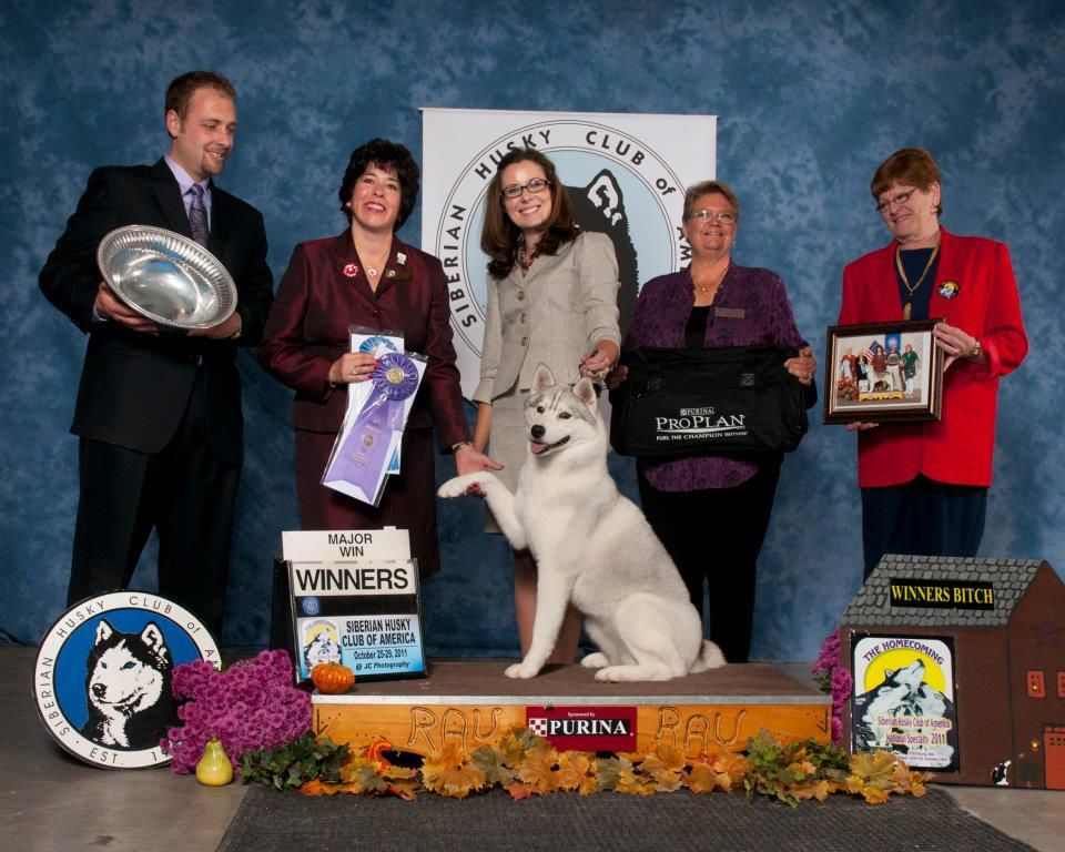 Sofi Pictured As Wb At The 2011 National Specialty In Mass Under