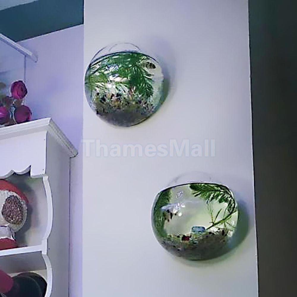 Flower vase with fish - 2pcs Glass Hanging Plant Terrarium Flower Vase Fish Pot Wall Ball Container Diy