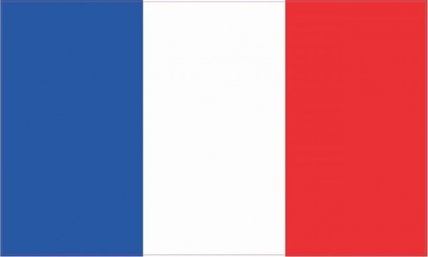 5in X 3in France Flag Sticker French Country Vinyl Car Bumper Decal Vinyl Car Stickers Bumper Stickers France Flag