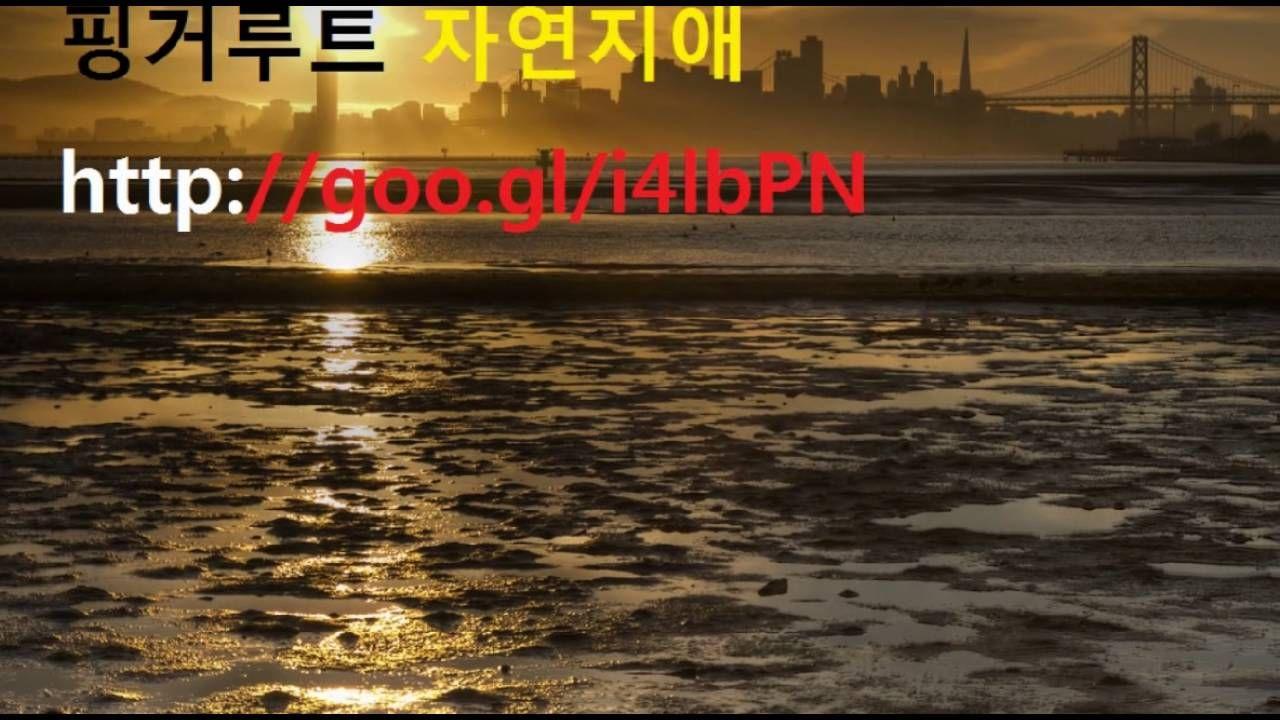 핑거루트,, 자연지애^ ^ 핑거루트효능이 뭔가요?!!
