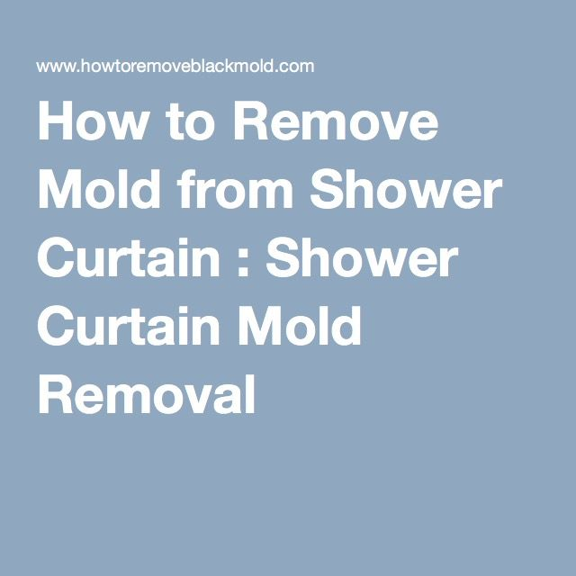 How to Remove Black Mold   Remove mold and Mold removal