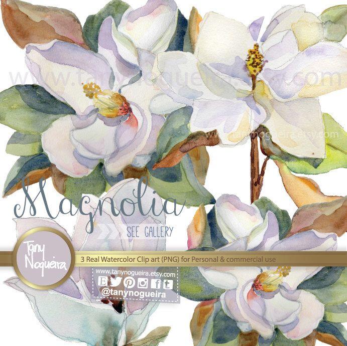 Https Www Etsy Com Es Listing 192885186 Clip Art Magnolia Flores Png Fondo Magnolia Watercolorart Eventi Weddings Nozze Parteci Clip Art Art Images Art